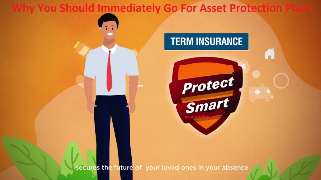 Why You Should Immediately Go For Asset Protection Plans